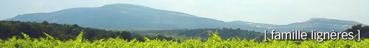 domaine ligneres - view of Alaric Mountain